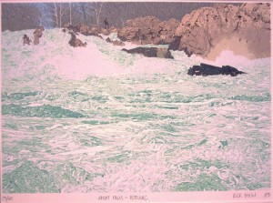 Biehl Great Falls Potomac