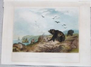 Bodmer Hunting Bear (1)
